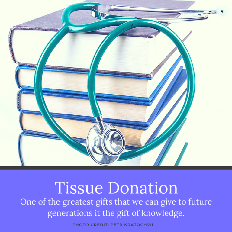 tissue donations Enroll online now - it takes only seconds one donor can save 8 lives through organ donation and heal countless others through tissue donation.